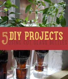 5 DIY Projects Using Cut Glass Bottles |How to Cut Glass With String