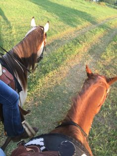 Me and about the only friend I have lol! Horse Girl Photography, Photography Pics, Equine Photography, Animal Photography, Arte Equina, Horse Story, Beautiful Arabian Horses, Snapchat Picture, Relationship Goals Pictures