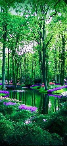 Jardines de Keukenhof, Países Bajos