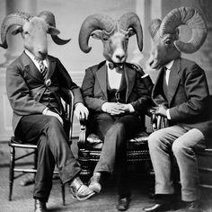 Cette page Etsy a toute une série de montage dans lesquels des têtes d'animaux sont intégrés sur des corps d'humains dans des photos anciennes. ( Via )
