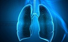If you see these symptoms, then it is the disease in the lungs. disease in the lungs Lungs are the main organ of our body whi. Kinds Of Diseases, Healthcare News, Lung Cancer, Cancer Cells, Healing Herbs, Health Facts, Our Body, Healthy Tips, Lunges