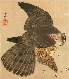 Japanese Art. Fine Art Reproduction. Hawk and Prey, c. 1700 by Kano Tsunenobu. Fine Art Print