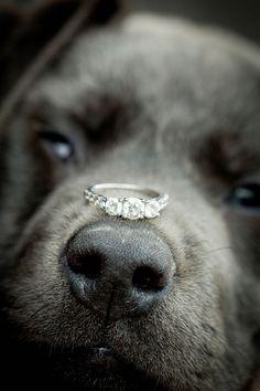 Wedding ring pictures with your best | http://bestfriendmemories.blogspot.com