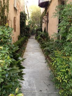 There is just so much beauty here! Shady paths and courtyards everywhere...
