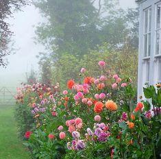 Garden Planters, Garden Beds, Cut Garden, Garden Benches, Garden Sofa, Beautiful Gardens, Beautiful Flowers, Magical Gardens, Front Flower Beds