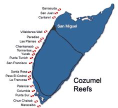 Watch this video to see for yourself why Cozumel is acclaimed as one of the world's best dive destinations