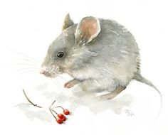 Mouse watercolor painting - Art Print. Nature or Animal Illustration. Red and Grey