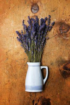 Lavender herbs in vase by WonderMe on Creative Market