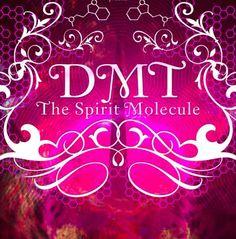 """DMT – A MOLÉCULA DO ESPÍRITO - 75min. O filme narra as pesquisas pioneiras do Dr. Rick Strassman com DMT (dimetiltriptamina) por meio de uma abordagem multifacetada sobre este intrigante alucinógeno encontrado no cérebro humano e em milhares de plantas. O documentário apresenta os incríveis efeitos deste composto, seu papel nas experiências de quase-morte e...<br /><a class=""""more-link""""…"""