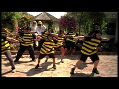 I use this to teach my class about bees and have fun dancing.
