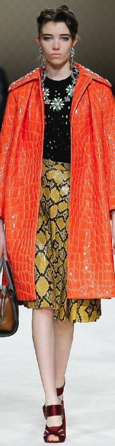 Fall 2015 Ready-to-Wear Miu Miu