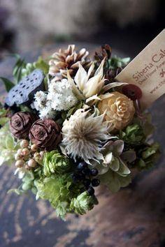 シベリアケヱキのこんな一日 Dried And Pressed Flowers, Dried Flowers, Fresh Flowers, Beautiful Flower Arrangements, Floral Arrangements, Beautiful Flowers, Dried Flower Bouquet, How To Preserve Flowers, Artificial Flowers