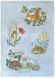 Squirrel on hazel branch, mouse on poppyetc
