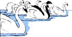 Swan Drawing   White And Black Swans clip art - vector clip art online, royalty free ...