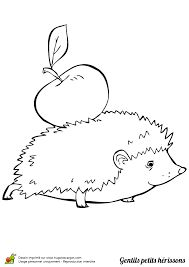 HEDGEHOG W/ APPLE Paper Cutting, Applique Patterns, Embroidery Applique, Cut And Paste Worksheets, Colouring Pages, Cute Pictures, Folk Art, Hedgehog, Kindergarten