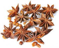 What are the benefits of anise? http://www.sifalibitkitedavisi.com/anason-faydalari-nelerdir.html