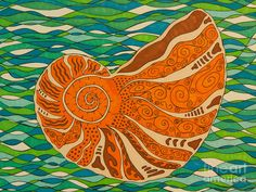 Sea Shell Drawing