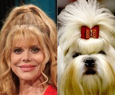 Celebrities and their animal look-a-likes - NY Daily News