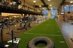 Artificial Grass Turf for Gyms, Fitness and Speed and Agility Training gym interiors commercial gym studio fitness center