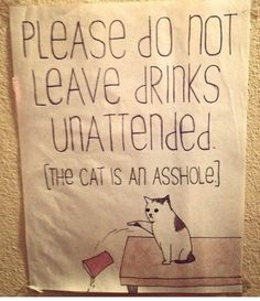 except in my house, the cats will be knocking drinks over because they got their head stuck in the glass...