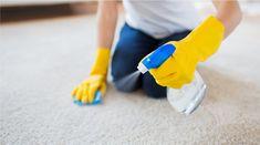 Halı Temizliği Nasıl Yapılmalı Doğal Yöntemler Nelerdir?