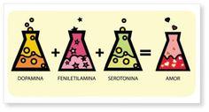 Sustancias químicas del amor