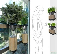 The Auxano Makes Plant Life Possible for City Dwellers Lacking Space trendhunter.com