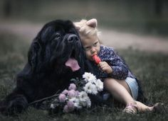 More About The Friendly French Bulldog Animals For Kids, Animals And Pets, Baby Animals, Funny Animals, Cute Animals, Cute Puppies, Cute Dogs, Dogs And Puppies, Doggies