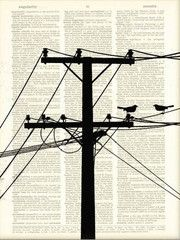 Birds on a wire art, this print comes from dire dictionaries destined to be destroyed.These vintage book prints make awesome, unique gifts and are environmentally responsible.