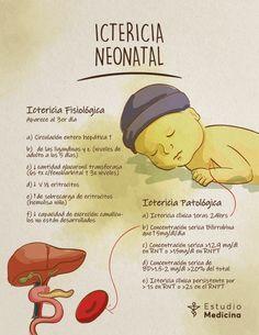 Med School, School Notes, Med Lab, The Awkward Yeti, Pregnant Nurse, Medicine Student, Student Studying, Anatomy, Psychology