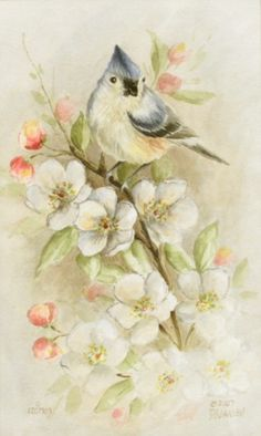 Jansen Art Online Store - DVD6001 Watercolor Titmouse, $14.95 (http://www.jansenartstore.com/products/DVD6001-Watercolor-Titmouse.html)