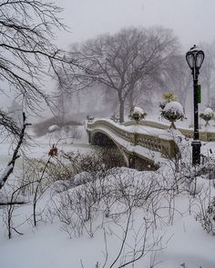 Bow Bridge, Central Park by - New York City Feelings New York City, Beautiful Places, Great Places, New York Christmas, Winter Scenery, Snow Scenes, Central Park, Winter Wonderland, Amazing Photography