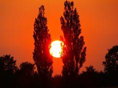 aparat z zalesia pokazuje: Pod Niebami,Pod Słońcami ,Co Czerwone Są Jak Krew....