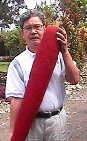 Buah Merah Fruit