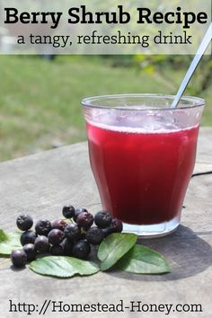 Shrubs, or drinking vinegar, are delicious, tangy, and refreshingly thirst-quenching drinks that you can make at home. Enjoy one over ice during your next heat wave! | Homestead Honey