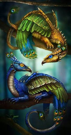 Peacock Dragons By LunarRose (Score: Digital Art XX- Dragons… Magical Creatures, Fantasy Creatures, Fantasy World, Fantasy Art, Fantasy Dragon, Fantasy Wesen, Cosplay Steampunk, Merian, Dragon Pictures