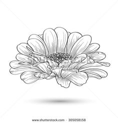 Printing Videos Architecture Home Cartoon Heart Sewing Tattoos, Bff Tattoos, Tatoos, Autumn Painting, Vector Flowers, Flower Doodles, Orange Flowers, Silk Flowers, Black And Grey Tattoos