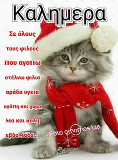Good Morning Cards, Beautiful Pink Roses, Christmas Greetings, Diy And Crafts, Irene, Emoji, Decor, Greek Sayings, Decoration