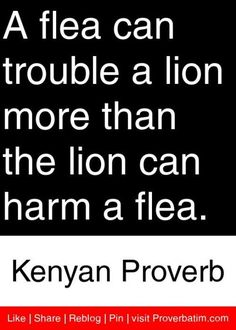 A flea can trouble a lion more than the lion can harm a flea. Wise Quotes, Great Quotes, Quotes To Live By, Motivational Quotes, Inspirational Quotes, The Words, Proverbs Quotes, Idioms And Proverbs, African Quotes