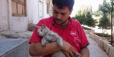 Mohammad Alaa Jaleel a créé un refuge qui accueille 170 chats.