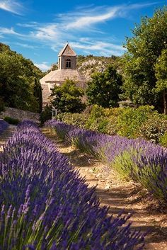 Gordes, Provence France