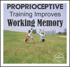 A pilot study published in Perceptual and Motor Skills examined whether regular classroom instruction, yoga or proprioceptive training improved working memory in individuals 18-59 years old. The experimental group participated in proprioceptive activities along with one other factor ie locomotion or navigation. Some of the tasks were climbing trees, walking on a balance beam, carrying …
