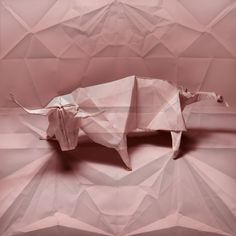 Origami Tauro