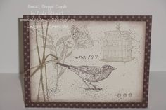 Nature Walk by paula010499 - Cards and Paper Crafts at Splitcoaststampers