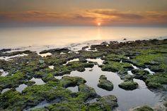 Title  Green Coast  Artist  Guido Montanes Castillo  Medium  Photograph