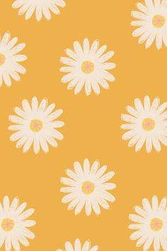 Free Cute Daisy HD phone wallpaper