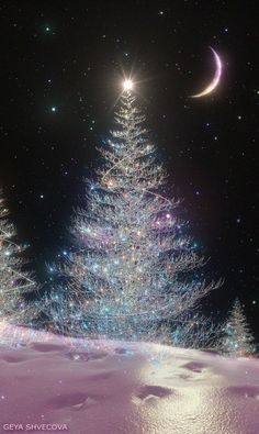 Shared by Find images and videos about gif on We Heart It - the app to get lost in what you love. Christmas Tree Gif, Christmas Tree Wallpaper, Christmas Scenery, Winter Scenery, Christmas Images, Christmas Wishes, Christmas Greetings, Winter Christmas, Vintage Christmas