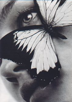 Michael Thompson | big | giant | butterfly | over size | face | light | moment | magic | www.republicofyou.com.au