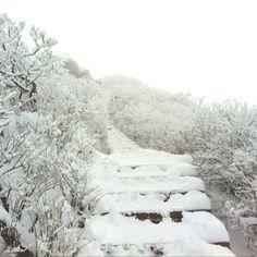 DeogYu Mountain, Muju, South Korea