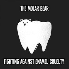 The Molar Bear